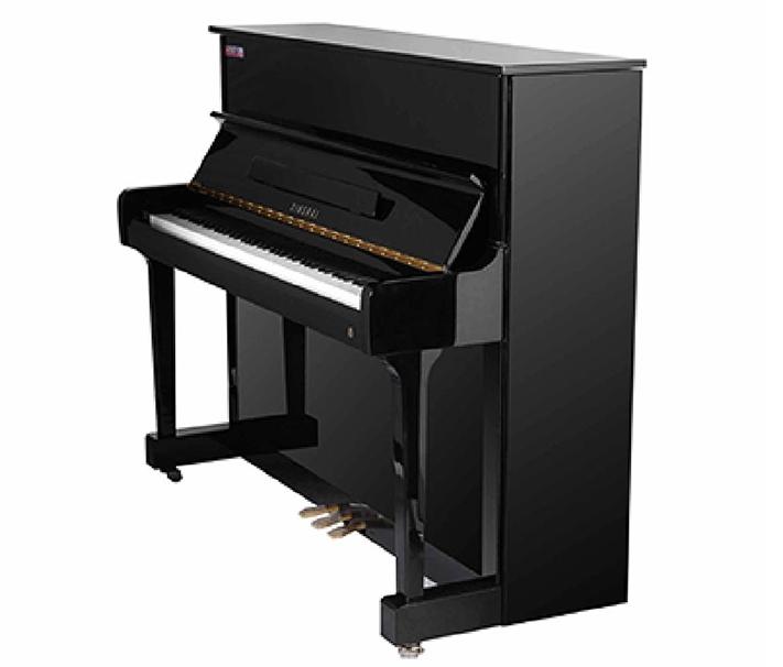 周口星海钢琴E-120LE