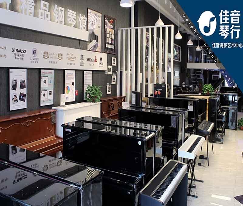 天津买钢琴,天津去哪买钢琴,佳音海豚琴行