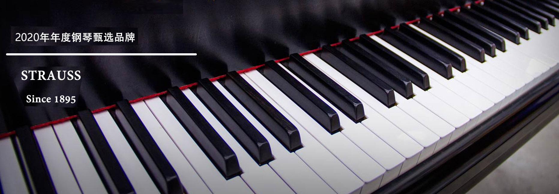 2020年性价比钢琴系列